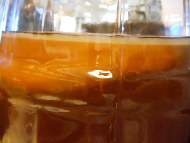 In this photo you can see the thick yellowish area which is our original SCOBY and the thin milky looking layer which is our SCOBY Toby growing.